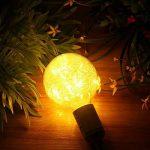 LED Edison Ampoule Vintage, Elfeland E27 50 LEDs Ampoule Décorative DIY avec Oiseau Nest Design Blanc Chaud 2200K 85-265V de la marque Elfeland image 2 produit