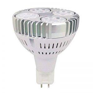 LED G12 ampoule 30W PAR30 Light AC85-265V 24° 2000 Lumens chaud blanc 150W remplacement halogène de la marque AscenLite image 0 produit