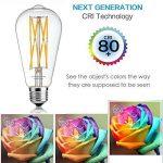 Leools LED Edison Ampoule 12 W Blanc chaud 2700 K 1200lm, 100 W équivalent E27 Medium Base, ST64 vintage LED Ampoules à filament, 360 degrés Angle de faisceau, non dimmable, Lot de 1 de la marque Leools image 3 produit