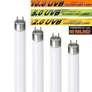 les tubes fluorescents TOP 3 image 0 produit