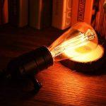Licperron Edison Ampoules E14 à vis St48 40 W 220 V Filament antique verre ampoule vintage, à intensité variable, Lot de 3 de la marque Licperron image 3 produit