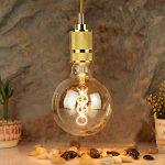 LighitngDesigner Edison Classique LED Ampoule G125 4W Dimmable Style Vintage 220 / 240V E27 (Ambre) de la marque LightingDesigner image 2 produit