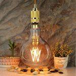 LightingDesigner Edison a mené l'ampoule grande taille 6W Dimmable 220 / 240V E27 verre ambre (R160) de la marque LightingDesigner image 1 produit