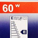 Lot de 10 ampoules à incandescence clair e27 60 w de la marque de la marque KS24 image 1 produit