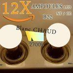 Lot de 12 ampoules Led B22 1W Guirlande Blanc chaud 3000k incassables (équivalence 15W) de la marque Revenergie image 1 produit