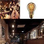 Lot de 6 ampoules Edison vintages E27 - 60W - À filament - 220V - Blanc chaud - Transparentes -À suspendre, A19/60w, E27 60.0W de la marque Solobay image 4 produit