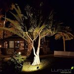 Lumare R7s Ampoule halogène LED 10W 118mm 230V Culot équivalent de 75W Équivalent de ampoule halogène 3500 K Blanc chaud jusqu'à blanc neutre de la marque Lumare image 1 produit