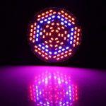 Lumière De Plante 30W 50W 80W E27 LED Pleine Spectrum Lampe De Croissance De Plantes Horticulture Ampoule Pour Jardin ( Edition : 80w ) de la marque Yosoo image 3 produit