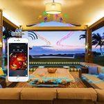 Lumisky BBS-01 GOLD Ampoule LED Musicale E27 Bluetooth MP3 avec Haut-Parleur Intégré Doré 5 x 5 x 13 cm de la marque LUMISKY image 3 produit
