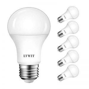 LVWIT 13W Ampoule LED E27, Equivalent à Ampoule 100W, Blanc Froid 6500K, LED Ampoule 1055Lm ultra-brillante, Ampoule Classique (lot de 6) de la marque LVWIT image 0 produit