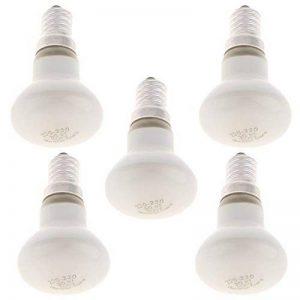 MagiDeal 5pcs SES R39 E14 Ampoules à Réflecteur Verre Lampe Tungstène Spot pour Maison Bureau Magasin 30W de la marque MagiDeal image 0 produit