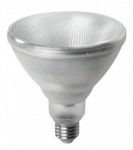 Megaman Ampoule E27 (Edison Screw) LED de la marque Megaman image 0 produit