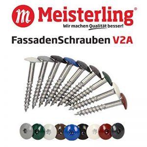 Meister Ling® Façade Vis en acier inoxydable V2A/Inox, avec enregistrement couleur à tête plate Galvanisé thermolaqué et Torx T 20, (par lot de 100+ 1Bit), V2A, gris de la marque Meisterling image 0 produit