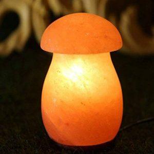 Natural Himalaya Cristal Sel Lampe Champignon Main Sculpture Anion Radiation Lampe Chambre Séjour Sauna Base En Bois Massif (Chaud Blanc) de la marque GUOKAIXU image 0 produit