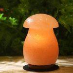 Natural Himalaya Cristal Sel Lampe Champignon Main Sculpture Anion Radiation Lampe Chambre Séjour Sauna Base En Bois Massif (Chaud Blanc) de la marque GUOKAIXU image 4 produit