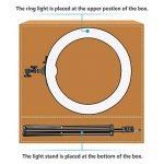 Neewer SMD LED Lumière Anneau Dimmable 48 cm (Sac NON Fourni) avec 200 cm Pied, Récepteur Bluetooth, Porte Smartphone, Montage Sabot pour Photo Studio YouTube Vidéo de la marque Neewer image 1 produit