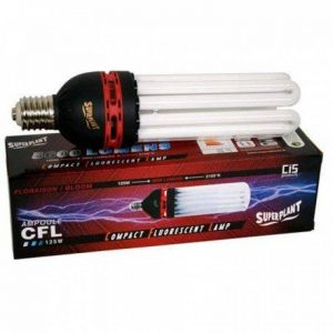 NEW AMPOULE CFL SUPERPLANT V2 125W FLORAISON 2100K de la marque Superplant image 0 produit