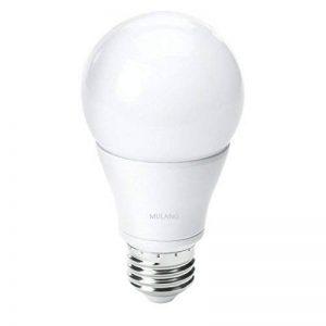 Omini ampoule LED A1915W Medium Base (E26), lumière du jour Blanc 1455lm 100W équivalent, ampoules à économie d'énergie, ampoule LED pour éclairage de la maison, Verre, 6000k Cold White 15w E27, E27 15.00W 220.00V de la marque MULANG image 0 produit