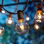 OxyLED G40 Ampoules de rechange pour éclairage de jardin extérieur, avec 25 ampoules incolores blanc chaud, niveau A de la marque OXYLED image 1 produit