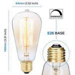 Pack de 6 ampoules Edison, Ampoule ancienne de style vintage, Ambre chaude, Dimmable (60w/220v) de la marque Basics Hardware image 2 produit