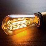 Pack de 6 ampoules Edison, Ampoule ancienne de style vintage, Ambre chaude, Dimmable (60w/220v) de la marque Basics Hardware image 4 produit
