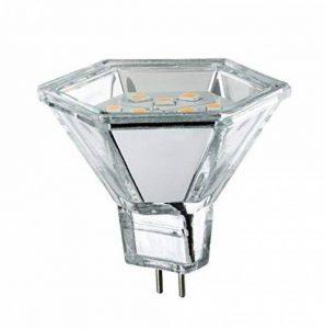 Paulmann Licht 281.38 Éclairage intérieur, Verre, GU5.3, 2 W, Argenté, 4,5 x 5, x 4,5 cm de la marque Paulmann image 0 produit