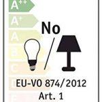 Paulmann Licht 54928 Ampoule, Verre, E27, 0 W, Blanc, 5 x 25 x 5 cm de la marque Paulmann image 2 produit