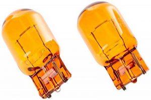Philips 12071B2 Lot de 2 Ampoule à Culot en Verre WY21W sous Blister de la marque Philips image 0 produit