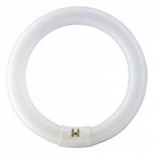 Philips Ampoule G10Q CIRCLINE 32w 4000K /840 de la marque Philips image 0 produit