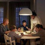 Philips Ampoule LED Globe Culot E27, 15 W equivalent 100W, Blanc Chaud 2700K de la marque Philips Lighting image 1 produit