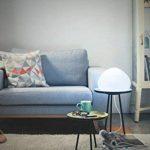 Philips Hue WellnerLampe de Table White Ambiance E27 9,5W [Interrupteur avec Variateur Inclus], Lampe Connectée - Lampe Led - Compatible avec Apple Homekit, Alexa de la marque Philips Lighting image 4 produit