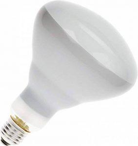 Philips - Lampe infrarouge 250w vis blc 8435 de la marque Kerbl image 0 produit