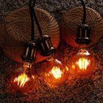 PureLume Ampoule Edison LED Master Globe Lampe Rétro (7W, E27, 240V) Vintage Filament incandescente de la marque Purelume image 3 produit