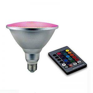 RAYWAY 20W PAR38 RGB Ampoule à LED, couvercle en verre E27 LED Lampe magique, projecteur en couleur avec télécommande 24 touches pour fête d'accueil, décoration de Noël de la marque RAYWAY image 0 produit