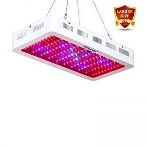 Roleadro LED Horticole Lampe 300W Lampe Croissance Grandi Dimensioni LED Grow Light pour Plante Verte dans Chambre de Culture ave IR UV Lumière 40 * 21 * 6CM de la marque Roleadro image 0 produit