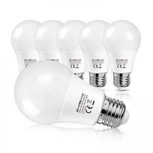 SHINE HAI Ampoule LED E27 A60 8W, Equivalent 60W à Ampoule Halogène/Incandescente, Blanc Froid 6500K, Lampe LED Sphérique, 800lm, Angle de Faisceau 220°, IRC>80, Lot de 6 de la marque SHINE HAI image 0 produit
