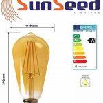 SunSeed 4x Ampoule Filament LED Vintage E27 6W Dimmable Blanc Extra Chaud 2200K de la marque Sun Seed image 3 produit