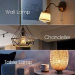 suspension avec ampoule filament TOP 4 image 2 produit