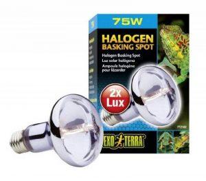 température ampoule halogène TOP 1 image 0 produit