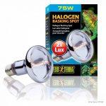 température ampoule halogène TOP 1 image 2 produit
