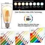 THINKMORE Ampoule LED E27 Filament ST64 Blanc Chaud 2200K 220 VAC 8W Équivalent 60W Ampoule à Incandescence Décoration & Lampes d'atmosphère Doré de la marque THINKMORE image 1 produit