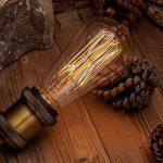 TRANSTEC® 4X Ampoule Rétro ST64 E27 60W Ampoule Edison Déco à Filament Antique Vintage Incandescence - 230V 2700K Blanc Chaud Dimmable - En Cage d'écure à Filament - Industrial Style - [Classe énergétique A] de la marque Transtec image 4 produit