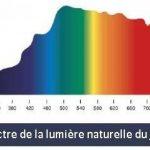 True-Light 23W - L'ampoule lumière du jour originale - Spectre complet 5500K IRC 95 de la marque True-Light image 3 produit