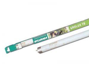 tube fluorescent plante TOP 3 image 0 produit