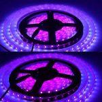 tube fluorescent plante TOP 9 image 2 produit