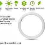 tube led circulaire TOP 7 image 2 produit