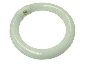 Velleman Tube fluorescent circulaire 22W Blanc froid de la marque Velleman image 0 produit